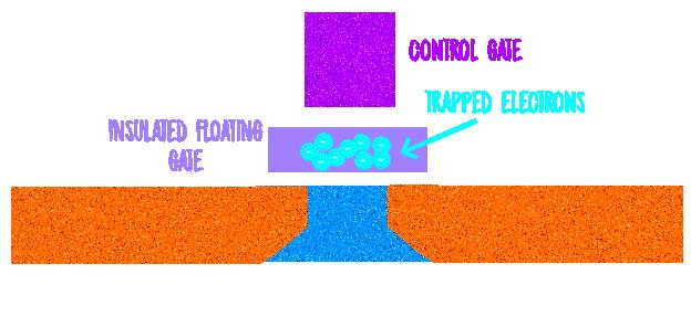 FG_FET_Diagram.png